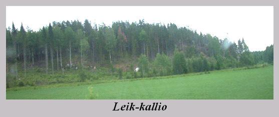 leik-kallio.jpg