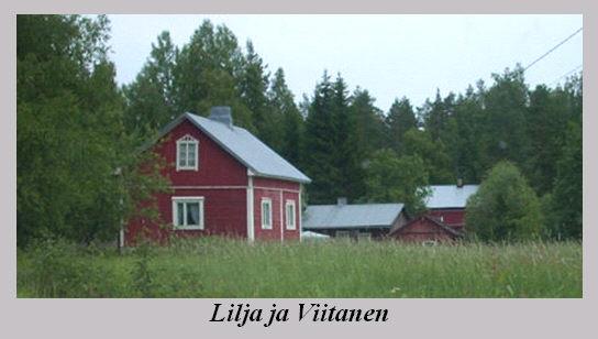 lilja_ja_viitanen.jpg
