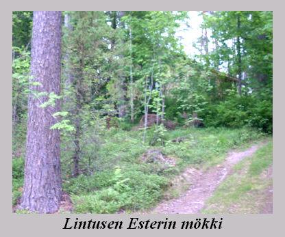 lintusen_esterin_mokki.jpg