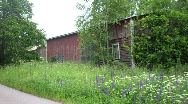 roineen_vikin_talo.jpg