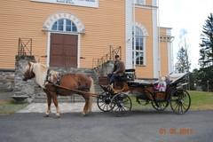 toja_2011_ajohevoset