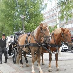 mikkeli_2012