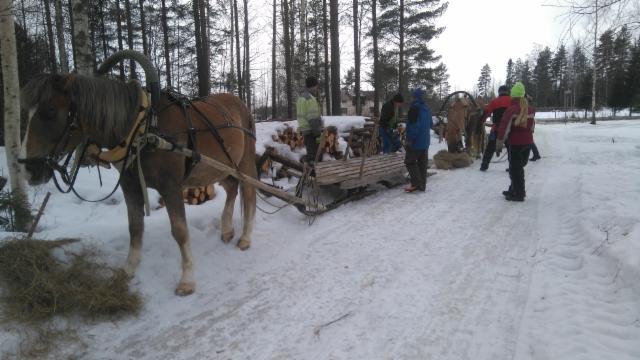 Metsäajokurssi