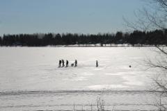 Jäälläkin oli mukavaa, varsinkin koirilla