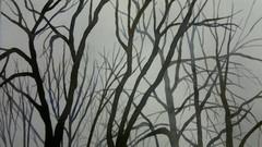 minnan puut2