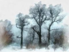 Yksityiskohta teoksesta Ruissalon puut