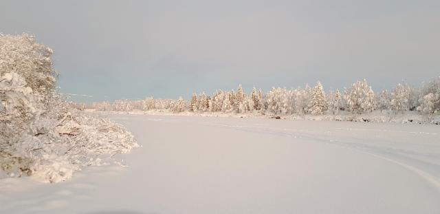 norjalainen sääpalvelu