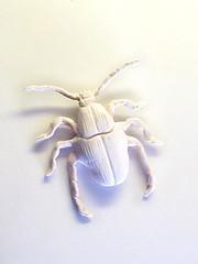 Bug, 2011