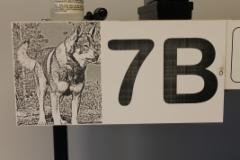 Talonumero koiran kuvalla