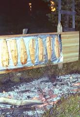 16-8-1999 naruska lapland dinner