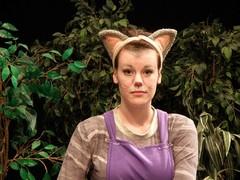 Kissa  (Terri Niemi)