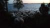 Aamun sarastaessa lauttaa odotellaan saaressa.