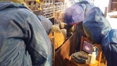Eläinlääkäriopiskelijat ultraamassa uuhia tammikuun 12. Karitsanalkuja kyllä löytyi kiitettävästi.