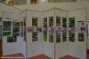 luontoturva.fi_karkolan_kunnantalon_aulassa_valokuvia_haitallisista_vieraslajeista