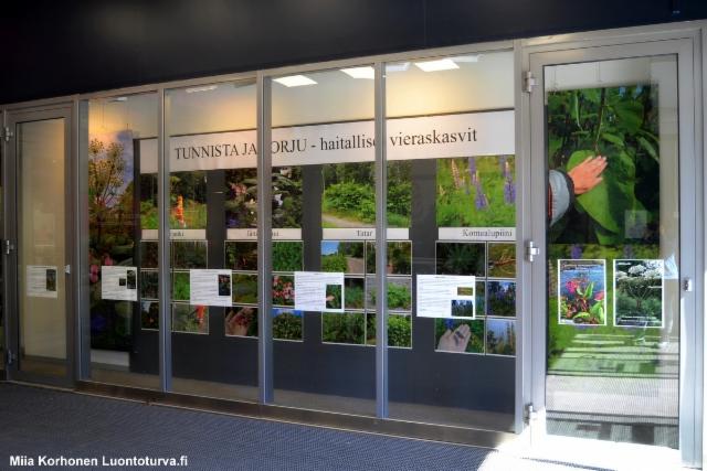 lahti_trio_tunnista_ja_torju_haitalliset_vieraskasvit_luontoturva.fi