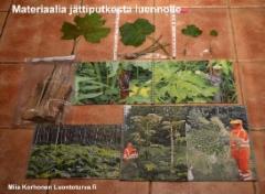 materiaalia_jattiputkesta_luennolle_luontoturva.fi_