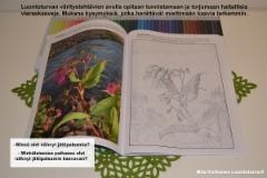 luontoturvan_varitystehtavat_ja_tiedotusta