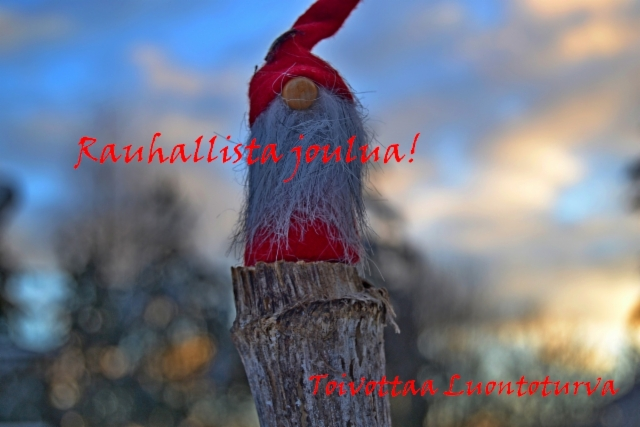 luontoturva_toivottaa_hyvaa_joulua