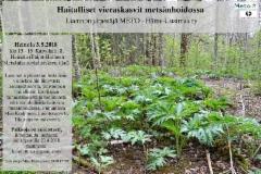 heinola_3.5.2018_haitalliset_vieraskasvit_metsanhoidossa_luento_meto_hame-uusimaa