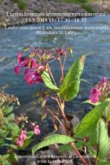 lahden_paakirjasto_15.5.18_luento_luontoon_levinneista_puutarhankasveista_www.luontoturva.fi
