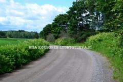 0766_royhytatar_levinneena_tienpientareille_miia_korhonen_luontoturva.fi