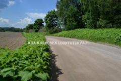 0773_ala_paasta_tatarta_leviamaan_luontoon_miia_korhonen_luontoturva.fi