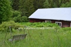 0841_jattiputken_valtaama_autiotila_paijat-hame_miia_korhonen_luontoturva.fi