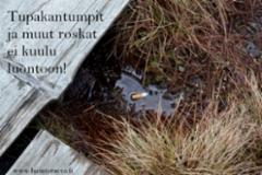 tupakantumpit_ja_muut_roskat_ei_kuulu_luontoon_luontoturva.fi