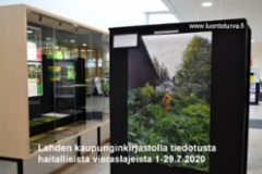 1-29.7.20_tiedotusta_haitallisista_vieraslajeista_lahden_kaupunginkirjastolla_www.luontoturva.fi