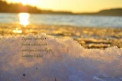 10_auringon_kimellys_miia_korhonen_luonnon_voima