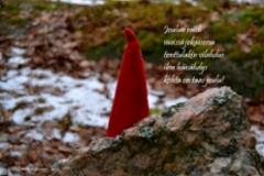 11_joulun_mieli_miia_korhonen_luonnon_voima