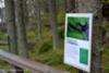 1061_tiedotusta_ukkoetanasta_ei_ole_haitallinen_miia_korhonen_luontoturva.fi