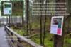 lahdessa_maastotiedotusta_haitallisista_vieraskasveista_miia_korhonen_luontoturva.fi