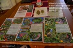 monnin_kylatalolla_kontiolahdella_puhetta_haitallisista_vieraslajeista_luontoturva.fi
