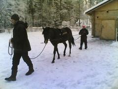Humpan työt alkoivat talvella 2010