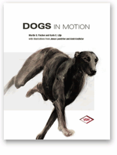 dogs_in_motion.png&width=400&height=500
