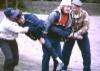 1993 Simpauttaja