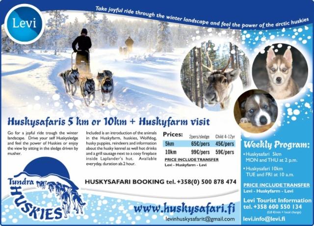 tundra_huskies_the_levi_times_2015_jpg