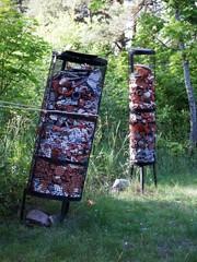 Savipeukaloiden hukkapaloja Kylä-Klemelän pihassa