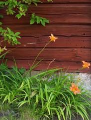 Kukkia, Raision taidetalolla