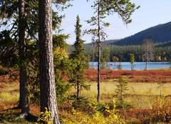 Kesänki-järvi, Äkäslompolo