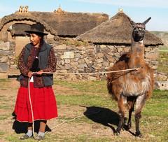 Intiaaninainen ja hänen laamansa