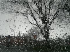Sateella autossa