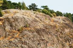 A53 Ihmisiä kalliolla