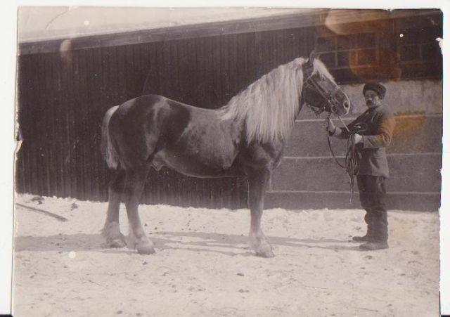 juuker 1915