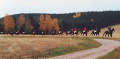 Hubertus 1996