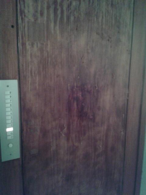 hissin_oven_viiluvaurio