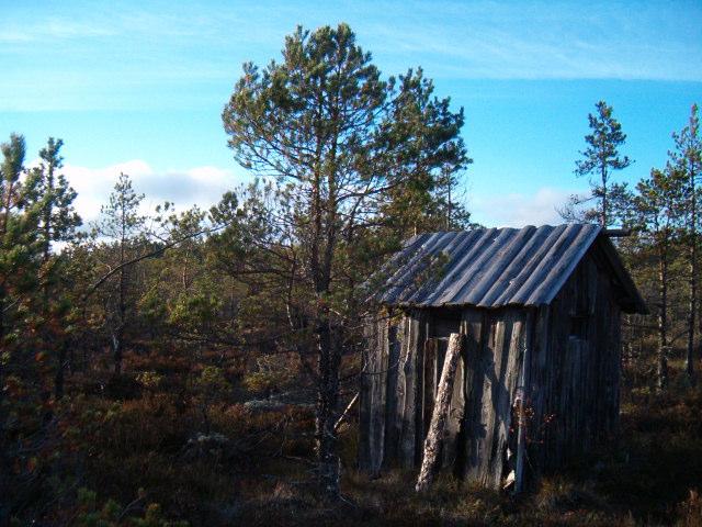 linnassuo_2005 (1)