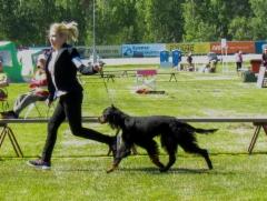 Suvi Karelia 2018 Kiela