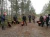 Ryhmäkuva aamulla metsämestaruuskisassa